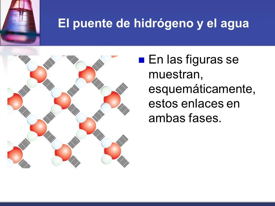 El puente de hidrógeno y el agua En las figuras se muestran, esquemáticamente, estos enlaces en ambas fases.
