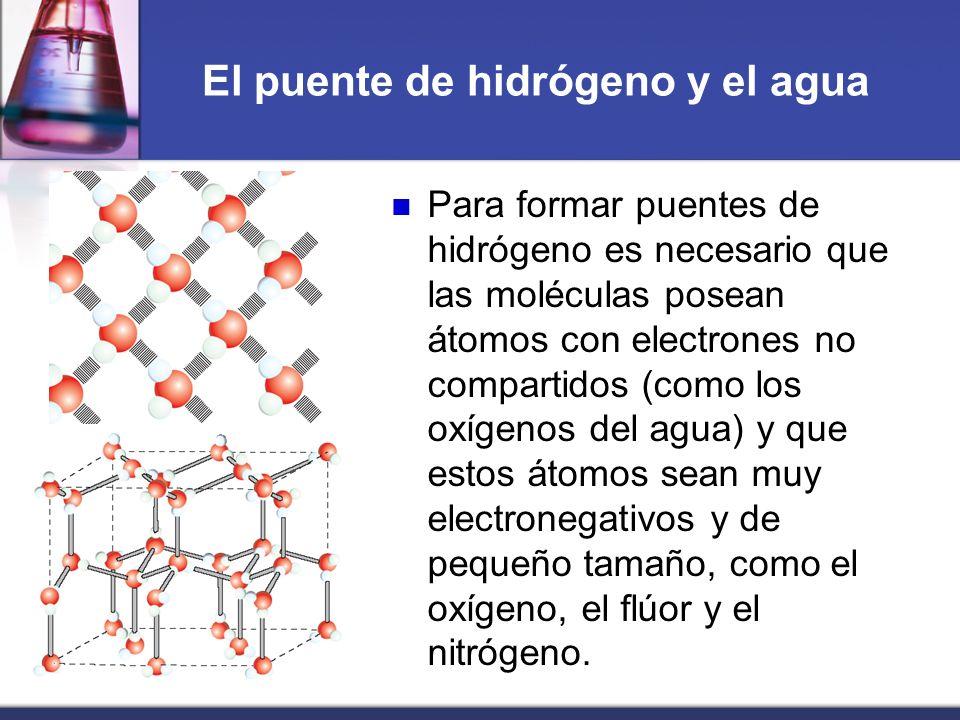 El puente de hidrógeno y el agua Para formar puentes de hidrógeno es necesario que las moléculas posean átomos con electrones no compartidos (como los
