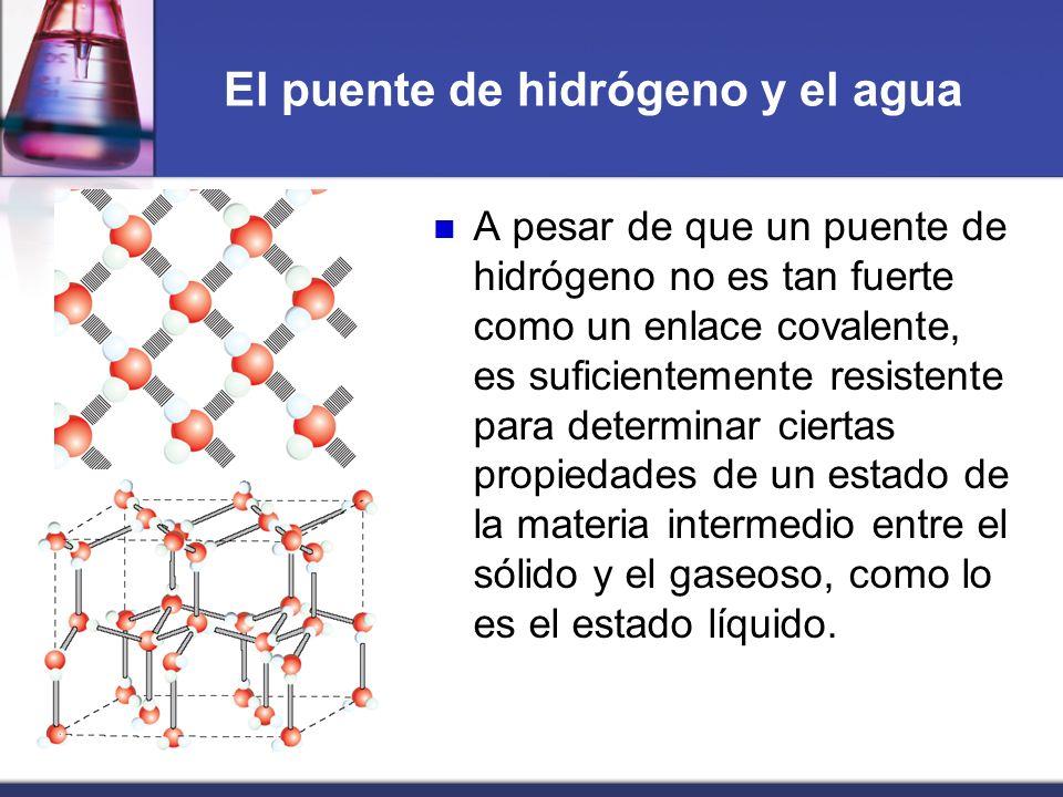 El puente de hidrógeno y el agua A pesar de que un puente de hidrógeno no es tan fuerte como un enlace covalente, es suficientemente resistente para d
