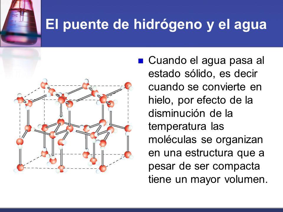 El puente de hidrógeno y el agua Cuando el agua pasa al estado sólido, es decir cuando se convierte en hielo, por efecto de la disminución de la tempe