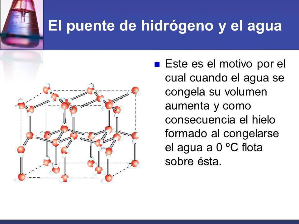 El puente de hidrógeno y el agua Este es el motivo por el cual cuando el agua se congela su volumen aumenta y como consecuencia el hielo formado al co