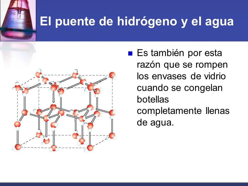 El puente de hidrógeno y el agua Es también por esta razón que se rompen los envases de vidrio cuando se congelan botellas completamente llenas de agu