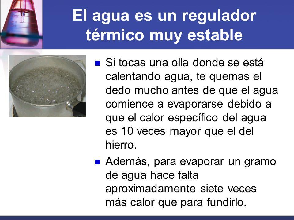 El agua es un regulador térmico muy estable Si tocas una olla donde se está calentando agua, te quemas el dedo mucho antes de que el agua comience a e