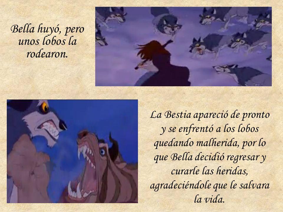 Más tarde, Bella salió de su habitación para conocer el castillo y se dirigió al ala Oeste, la zona prohibida por la Bestia. Allí descubrió la rosa pe