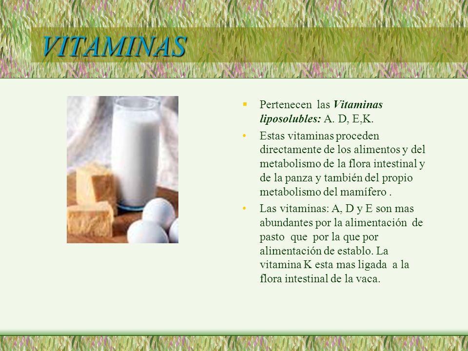 VITAMINAS Pertenecen las Vitaminas liposolubles: A. D, E,K. Estas vitaminas proceden directamente de los alimentos y del metabolismo de la flora intes