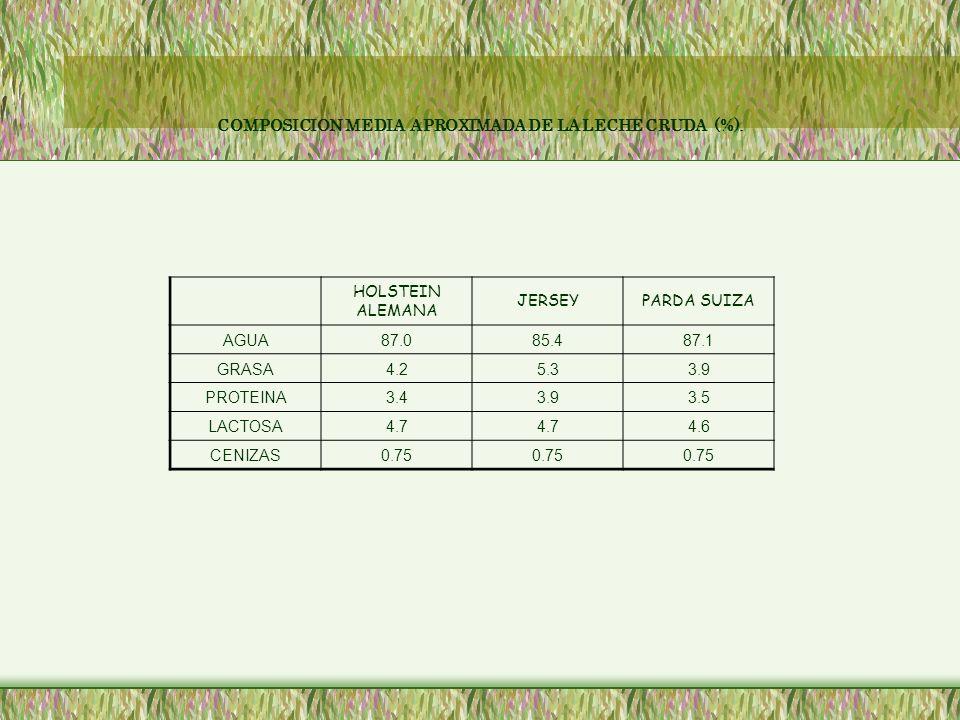 COMPOSICION MEDIA APROXIMADA DE LA LECHE CRUDA (%). HOLSTEIN ALEMANA JERSEYPARDA SUIZA AGUA87.085.487.1 GRASA4.25.33.9 PROTEINA3.43.93.5 LACTOSA4.7 4.