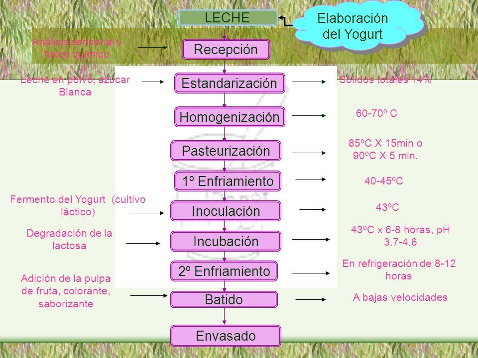 LECHE Recepción Estandarización Homogenización Pasteurización 1º Enfriamiento Inoculación Incubación 2º Enfriamiento Batido Envasado Análisis sensoria