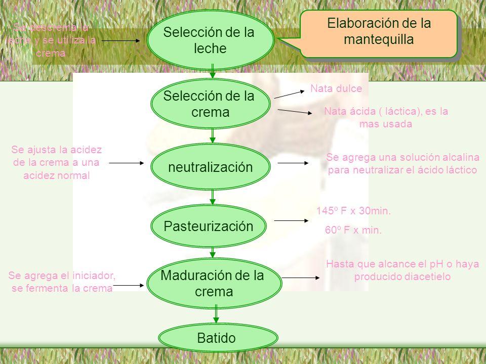 Elaboración de la mantequilla Selección de la leche Selección de la crema neutralización Pasteurización Maduración de la crema Se descrema la leche y
