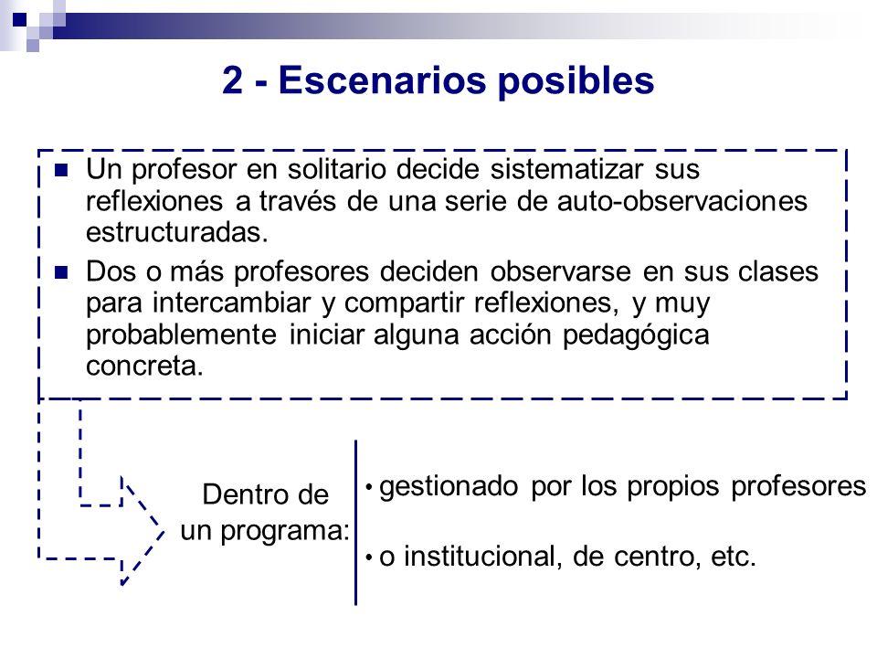 2 - Escenarios posibles Un profesor en solitario decide sistematizar sus reflexiones a través de una serie de auto-observaciones estructuradas. Dos o