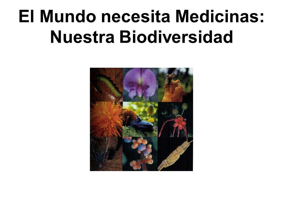 El Mundo necesita Medicinas: Nuestra Biodiversidad