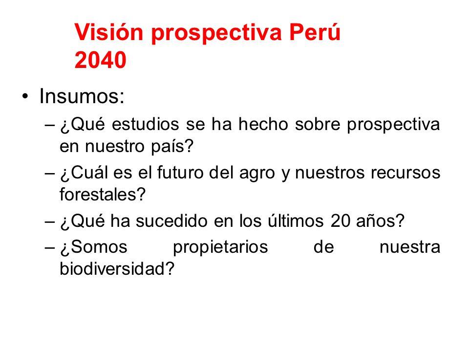 Insumos: –¿Qué estudios se ha hecho sobre prospectiva en nuestro país? –¿Cuál es el futuro del agro y nuestros recursos forestales? –¿Qué ha sucedido