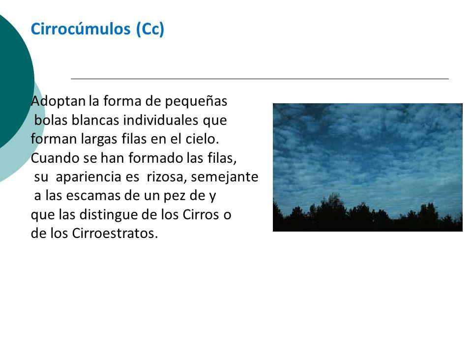 Cirrocúmulos (Cc) Adoptan la forma de pequeñas bolas blancas individuales que forman largas filas en el cielo. Cuando se han formado las filas, su apa