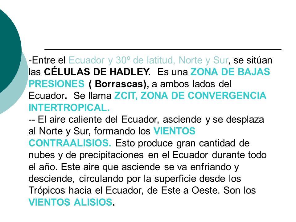 -Entre el Ecuador y 30º de latitud, Norte y Sur, se sitúan las CÉLULAS DE HADLEY. Es una ZONA DE BAJAS PRESIONES ( Borrascas), a ambos lados del Ecuad