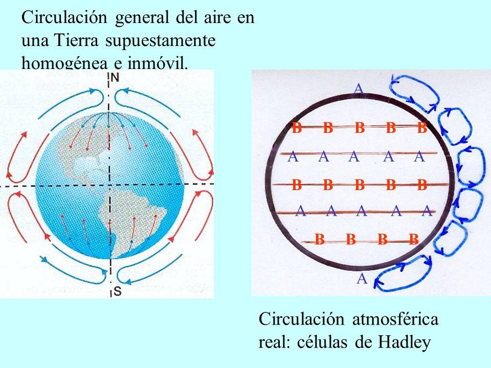 OLA DE FRÍO OLA DE CALOR SEQUÍA TORMENTA LLUVIAS GOTA FRÍA FRENTE FRÍO HURACÁN VIENTOS TORNADO RIESGOS CLIMÁTICOS CONSECUENCIAS CARACTERÍSTICAS CAUSAS Desastre general Inundación Torbellino enorme 150 km/h Lluvias abundantes Z.
