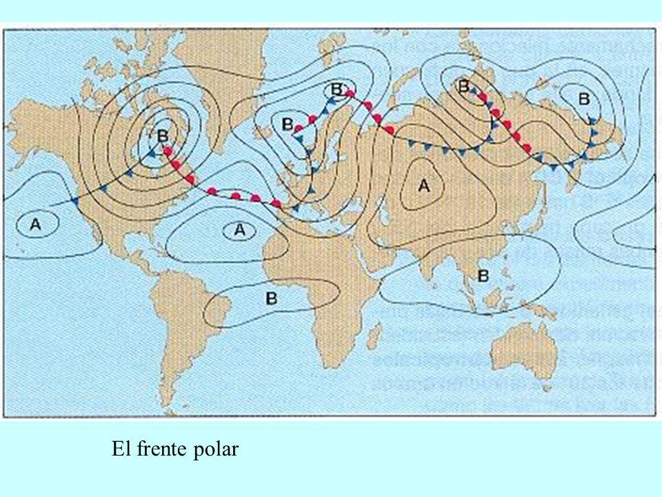 Posición del frente polar en verano En invierno el frente polar se desplaza hacia el sur pero no de forma homogénea.