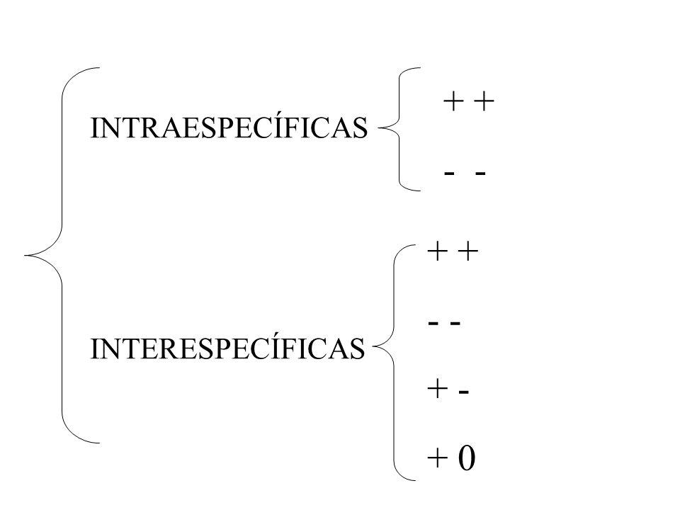 INTRAESPECÍFICAS INTERESPECÍFICAS + - + - + - + 0