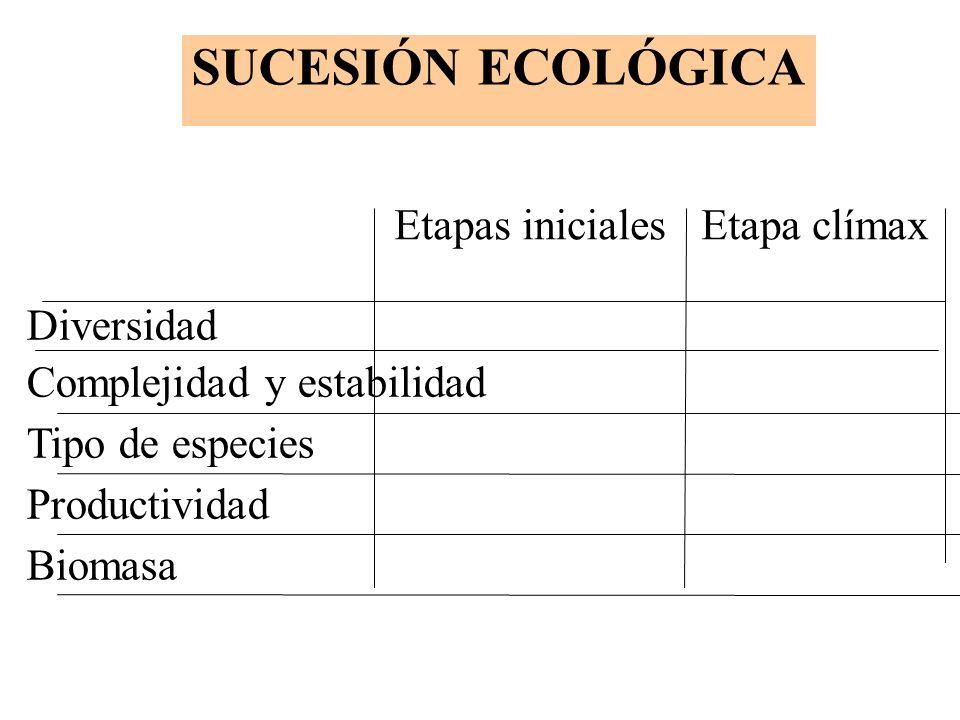 Etapas iniciales Etapa clímax Diversidad Complejidad y estabilidad Tipo de especies Productividad Biomasa SUCESIÓN ECOLÓGICA