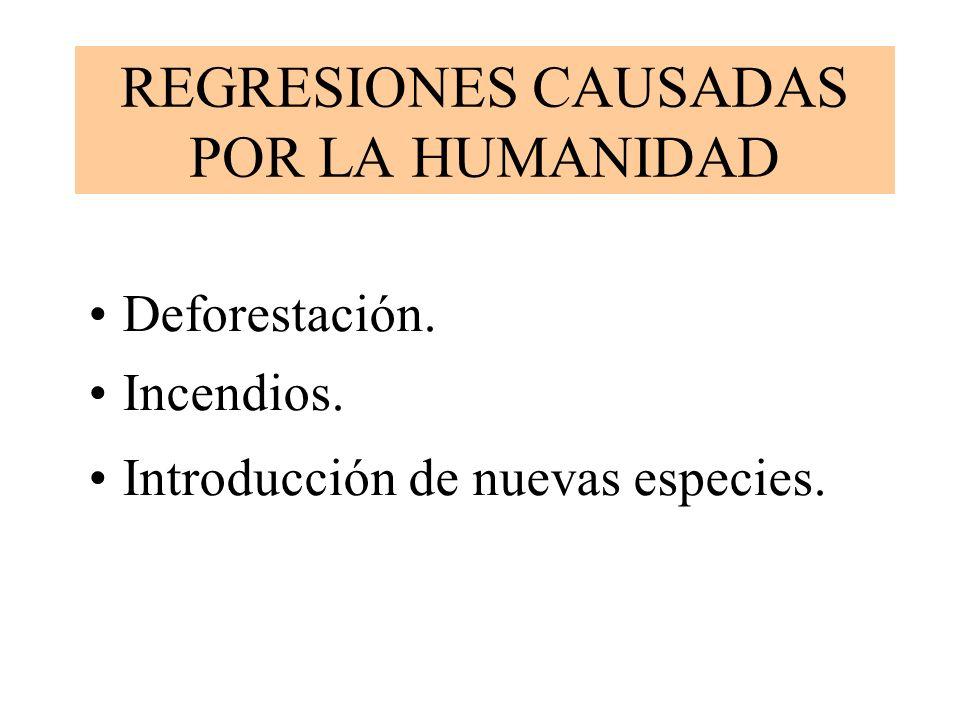 REGRESIONES CAUSADAS POR LA HUMANIDAD Deforestación. Incendios. Introducción de nuevas especies.