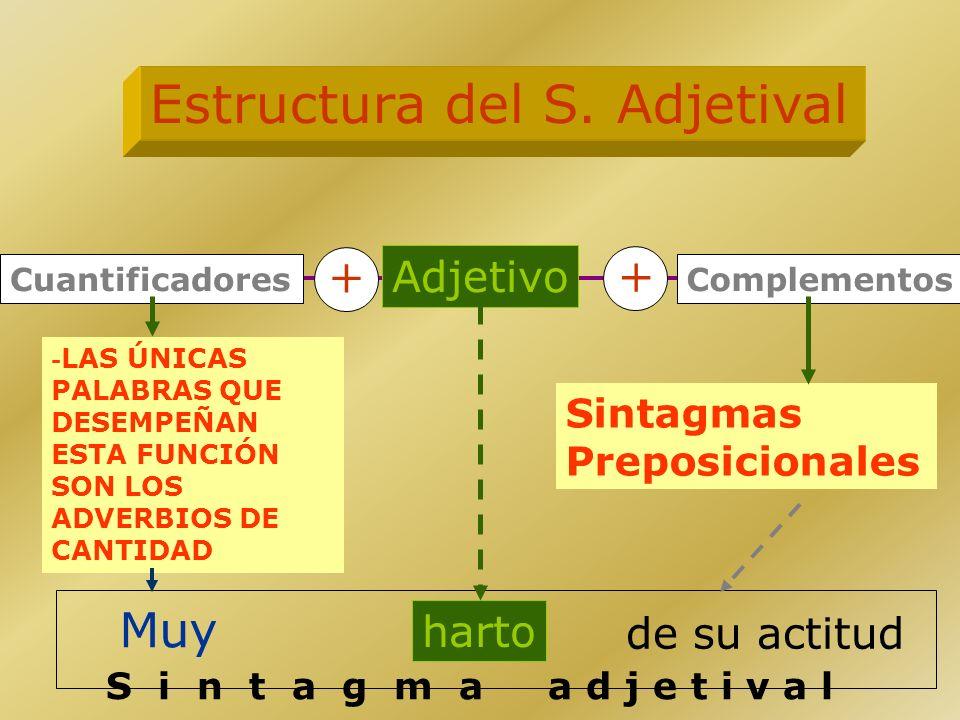 Nombre Complementos -Artículos -Posesivos -Demostrativos -Numerales -Indefinidos -Exclamativos -Interrogativos -Adjetivo/adyacente -Aposiciones -Sinta