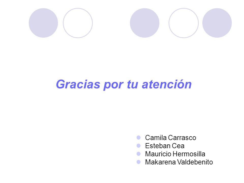 Gracias por tu atención Camila Carrasco Esteban Cea Mauricio Hermosilla Makarena Valdebenito