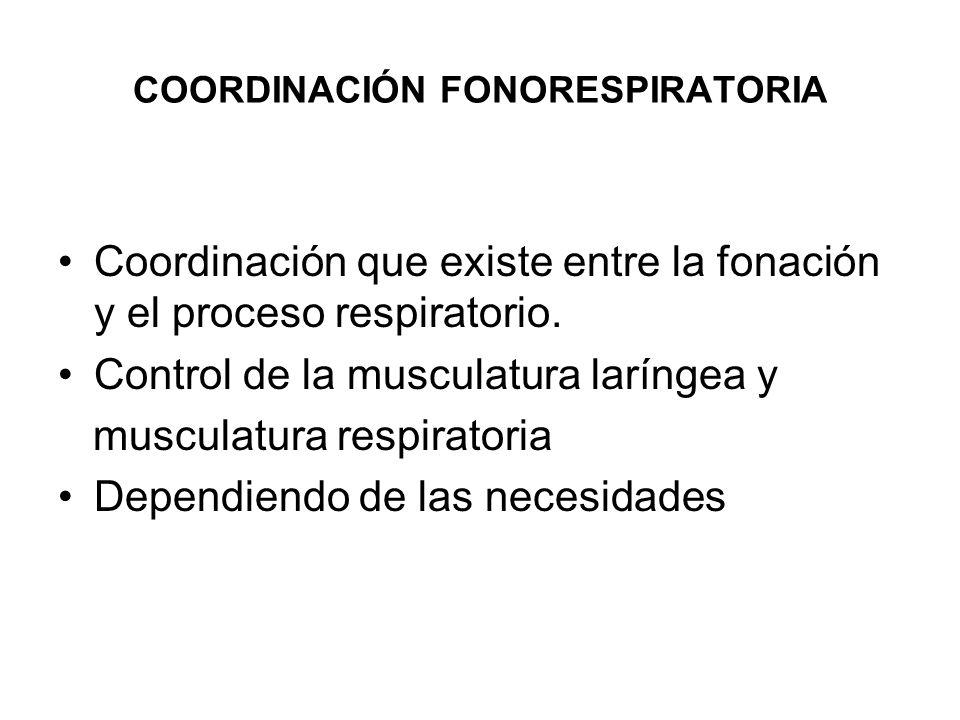 COORDINACIÓN FONORESPIRATORIA Coordinación que existe entre la fonación y el proceso respiratorio. Control de la musculatura laríngea y musculatura re