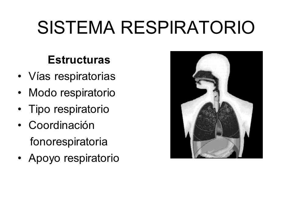 SISTEMA RESPIRATORIO Estructuras Vías respiratorias Modo respiratorio Tipo respiratorio Coordinación fonorespiratoria Apoyo respiratorio