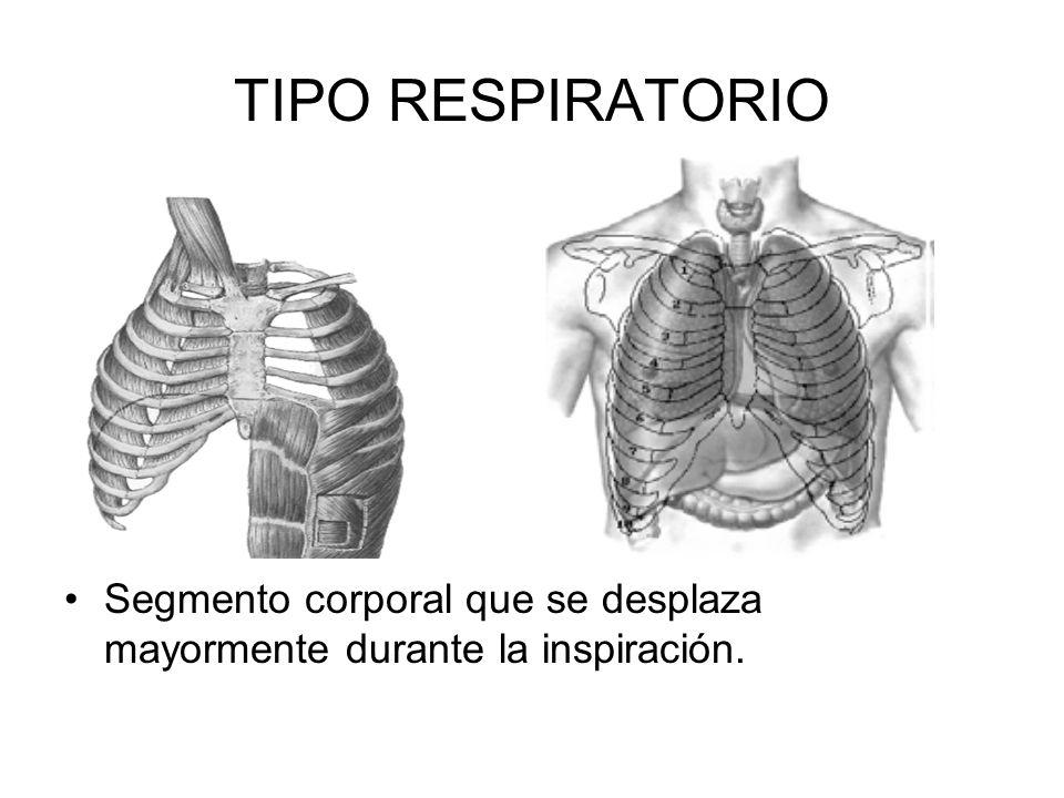 Tipos respiratorios Tipo Clavicular o costal alto Abdominal