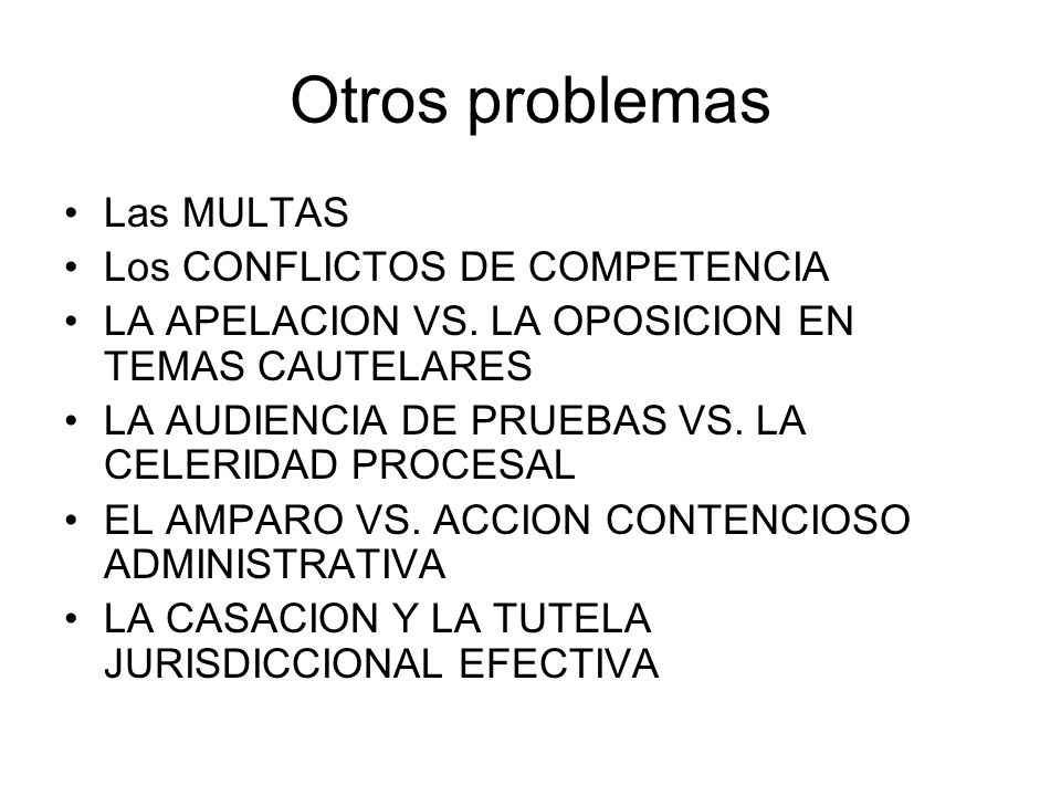 Otros problemas Las MULTAS Los CONFLICTOS DE COMPETENCIA LA APELACION VS. LA OPOSICION EN TEMAS CAUTELARES LA AUDIENCIA DE PRUEBAS VS. LA CELERIDAD PR
