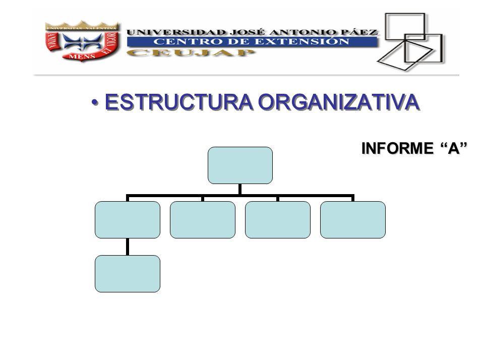ESTRUCTURA ORGANIZATIVA INFORME A