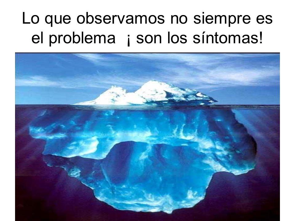 Lo que observamos no siempre es el problema ¡ son los síntomas!