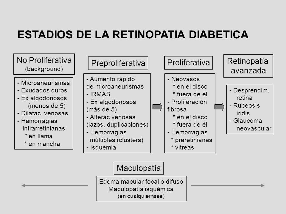 No Proliferativa (background) - Microaneurismas - Exudados duros - Ex algodonosos (menos de 5) - Dilatac. venosas - Hemorragias intrarretinianas * en