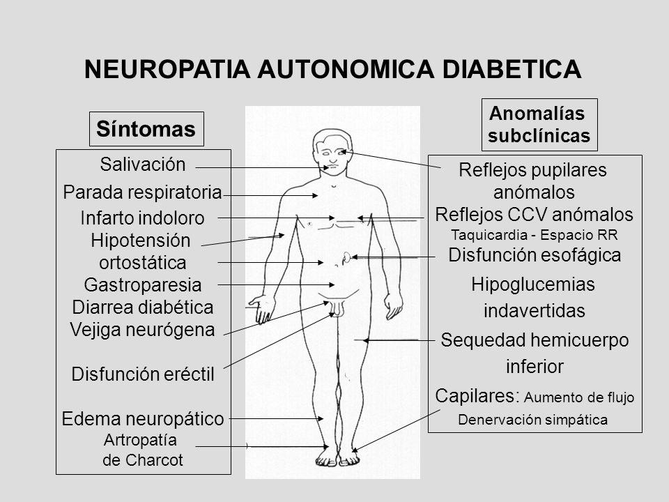 Salivación Parada respiratoria Infarto indoloro Hipotensión ortostática Gastroparesia Diarrea diabética Vejiga neurógena Disfunción eréctil Edema neur