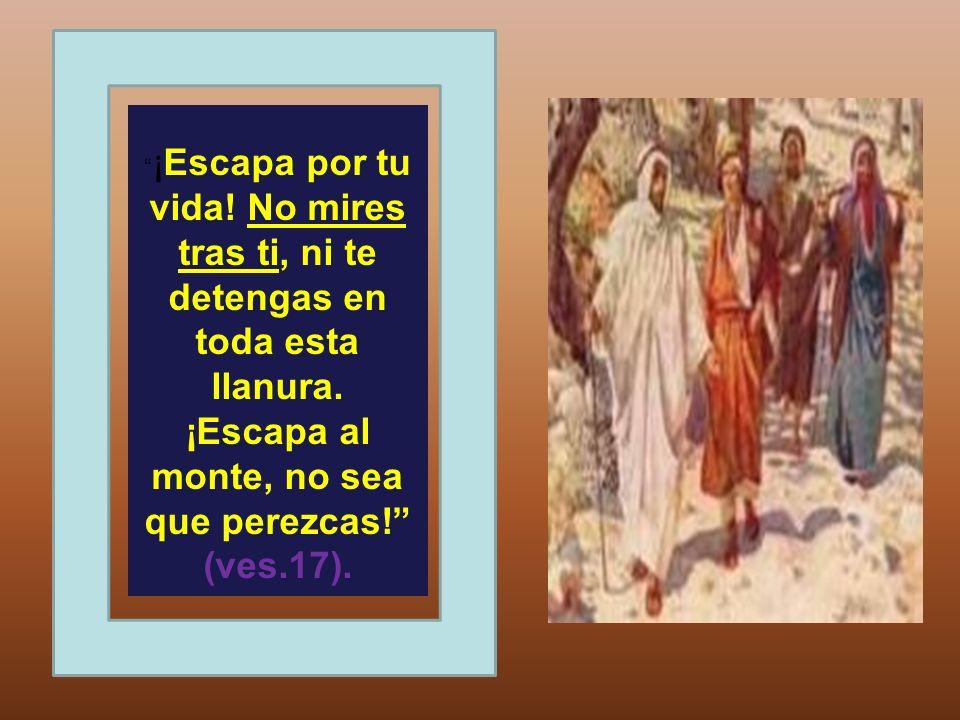 ¡Escapa por tu vida! No mires tras ti, ni te detengas en toda esta llanura. ¡Escapa al monte, no sea que perezcas! (ves.17).