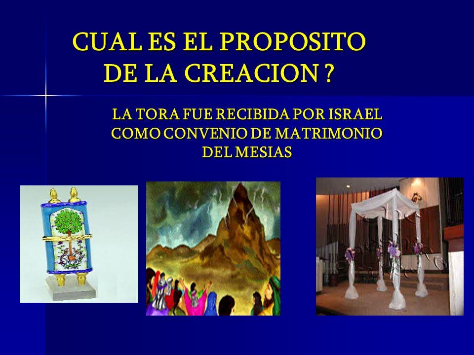 LA TORA FUE RECIBIDA POR ISRAEL COMO CONVENIO DE MATRIMONIO DEL MESIAS CUAL ES EL PROPOSITO DE LA CREACION ?