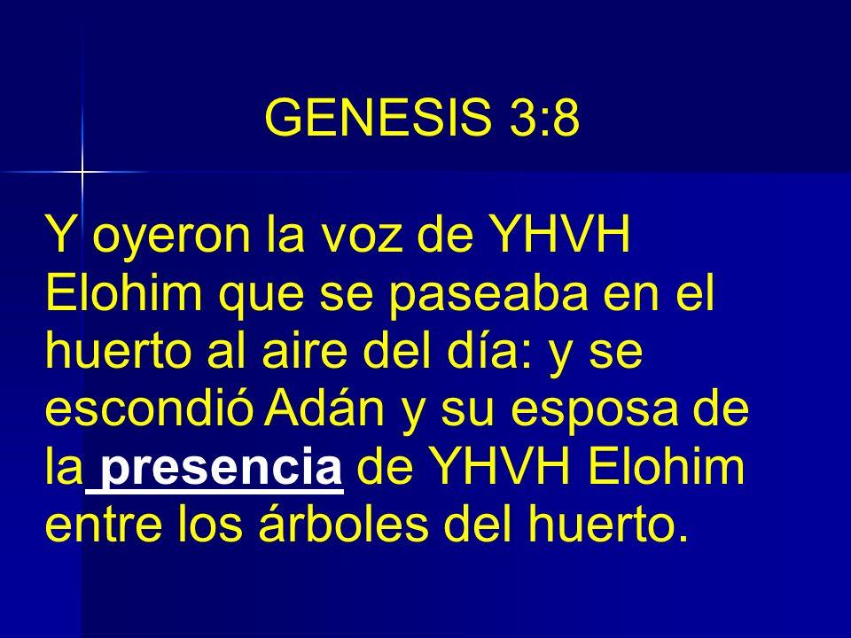 GENESIS 3:8 Y oyeron la voz de YHVH Elohim que se paseaba en el huerto al aire del día: y se escondió Adán y su esposa de la presencia de YHVH Elohim