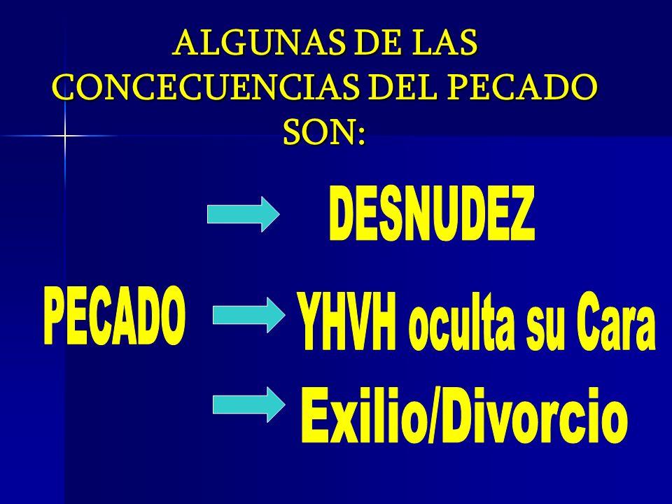 ALGUNAS DE LAS CONCECUENCIAS DEL PECADO SON: