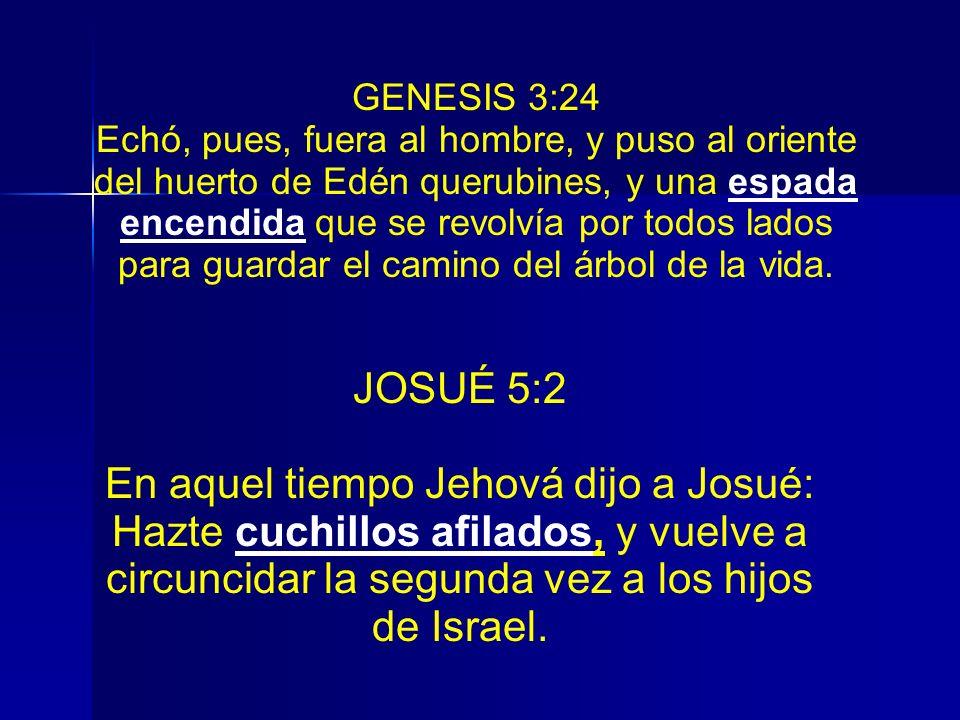 GENESIS 3:24 Echó, pues, fuera al hombre, y puso al oriente del huerto de Edén querubines, y una espada encendida que se revolvía por todos lados para