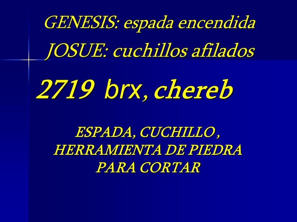 2719 brx, chereb ESPADA, CUCHILLO, HERRAMIENTA DE PIEDRA PARA CORTAR GENESIS: espada encendida JOSUE: cuchillos afilados