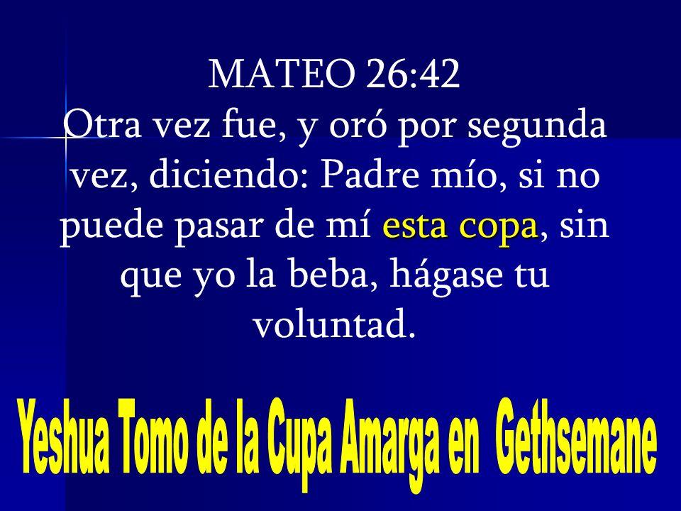 MATEO 26:42 esta copa Otra vez fue, y oró por segunda vez, diciendo: Padre mío, si no puede pasar de mí esta copa, sin que yo la beba, hágase tu volun