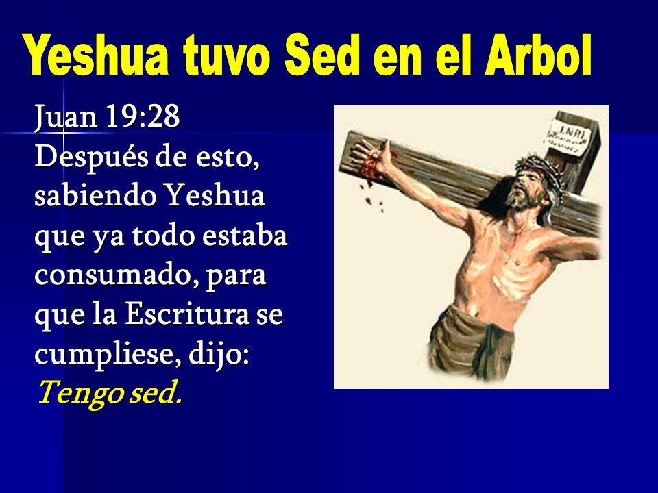 Juan 19:28 Después de esto, sabiendo Yeshua que ya todo estaba consumado, para que la Escritura se cumpliese, dijo: Tengo sed.