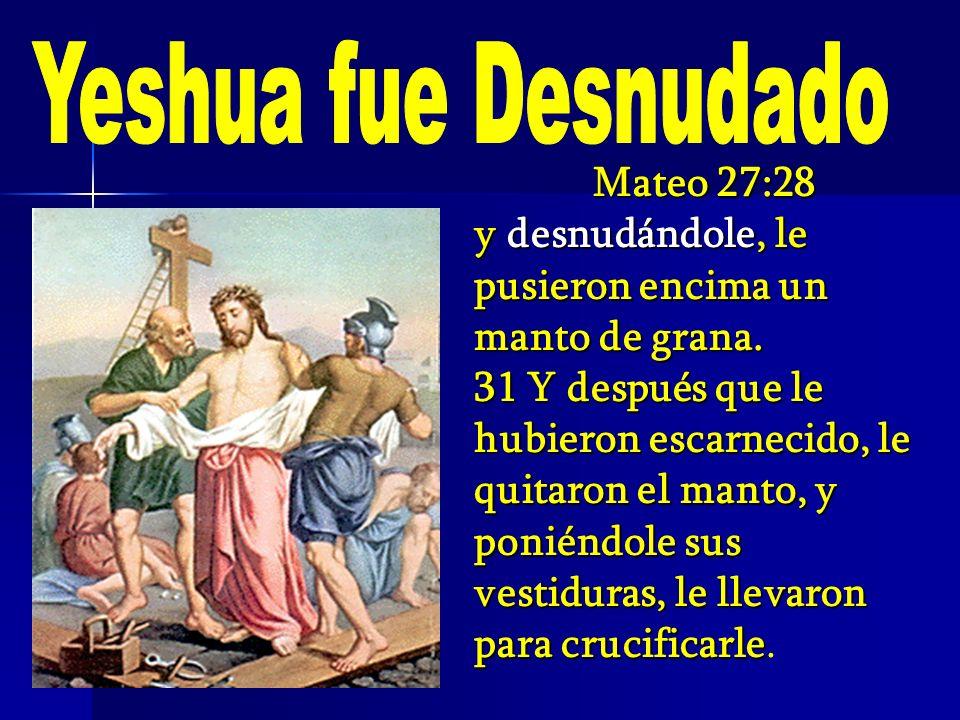 Mateo 27:28 y desnudándole, le pusieron encima un manto de grana. 31 Y después que le hubieron escarnecido, le quitaron el manto, y poniéndole sus ves