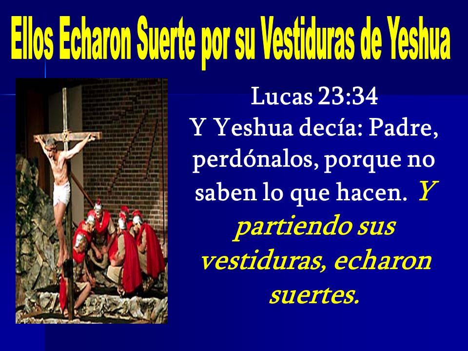 Lucas 23:34 Y Yeshua decía: Padre, perdónalos, porque no saben lo que hacen. Y partiendo sus vestiduras, echaron suertes.