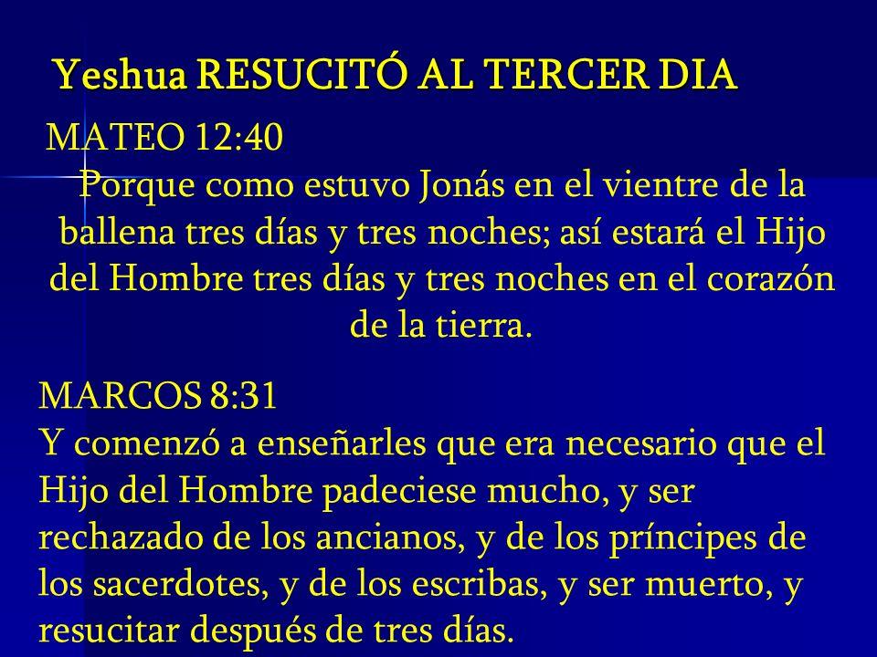 MATEO 12:40 Porque como estuvo Jonás en el vientre de la ballena tres días y tres noches; así estará el Hijo del Hombre tres días y tres noches en el