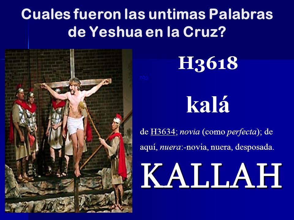 Cuales fueron las untimas Palabras de Yeshua en la Cruz? KALLAH H3618 כַּלָּה kalá de H3634; novia (como perfecta); de aquí, nuera:-novia, nuera, desp