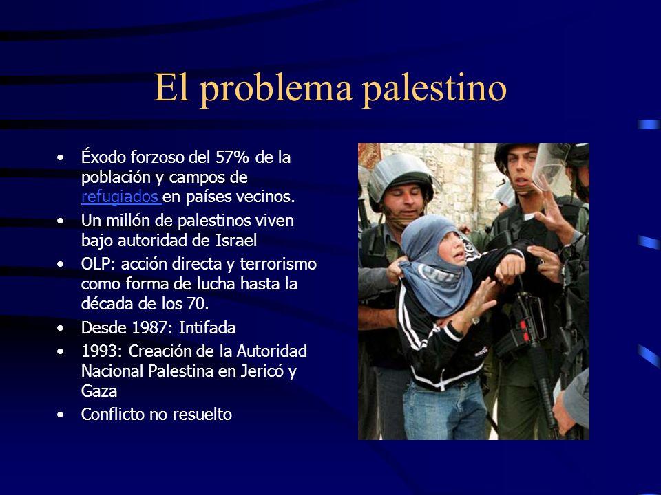 Conflicto árabe-israelí 1948-1995 2ª guerra 1956: Israel ocupa Sinaí Liga árabe crea la OLP (dirigida por Yasser Arafat) Guerra de los Seis días 1967: