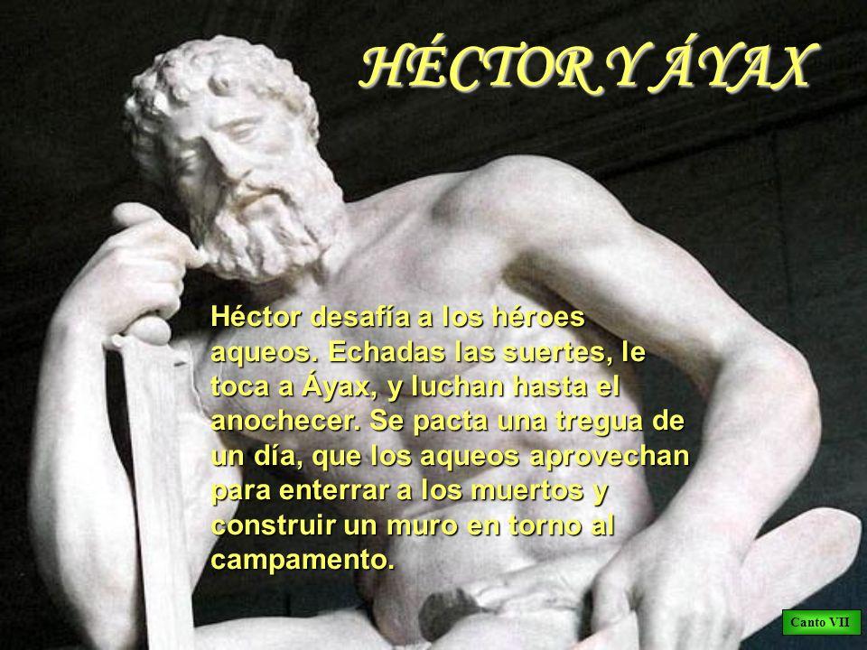 HÉCTOR Y ÁYAX Héctor desafía a los héroes aqueos. Echadas las suertes, le toca a Áyax, y luchan hasta el anochecer. Se pacta una tregua de un día, que