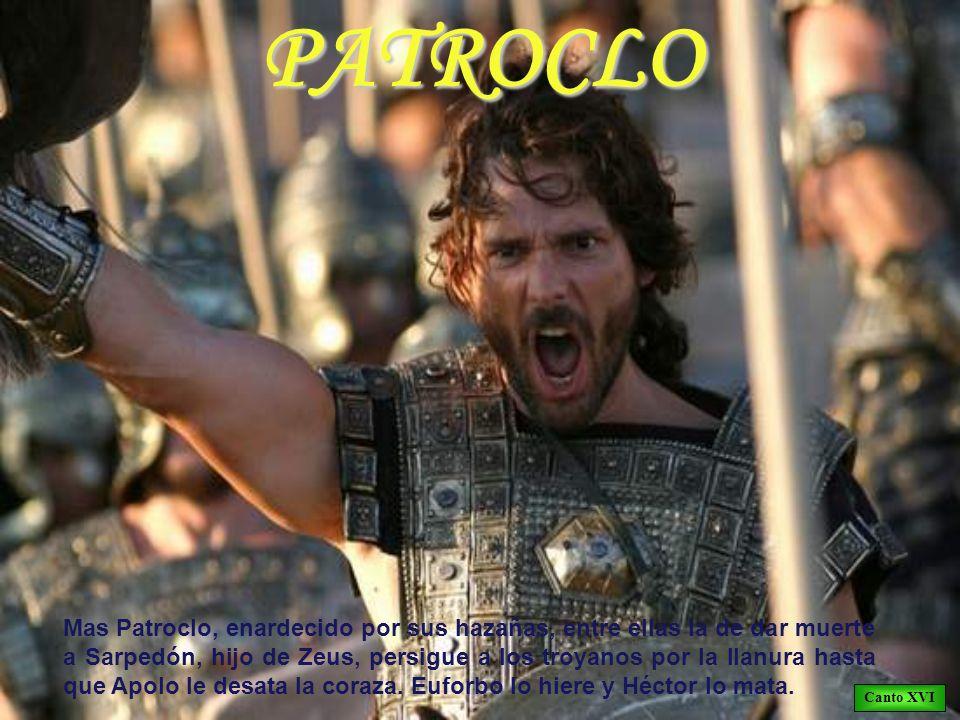PATROCLO Mas Patroclo, enardecido por sus hazañas, entre ellas la de dar muerte a Sarpedón, hijo de Zeus, persigue a los troyanos por la llanura hasta