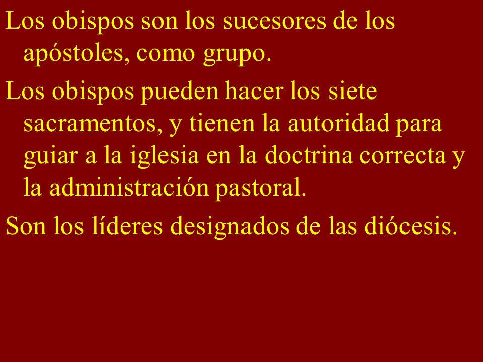 Los obispos son los sucesores de los apóstoles, como grupo. Los obispos pueden hacer los siete sacramentos, y tienen la autoridad para guiar a la igle