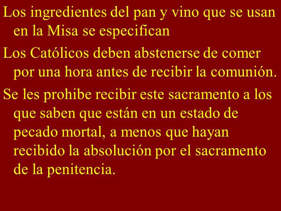 Los ingredientes del pan y vino que se usan en la Misa se especifican Los Católicos deben abstenerse de comer por una hora antes de recibir la comunió