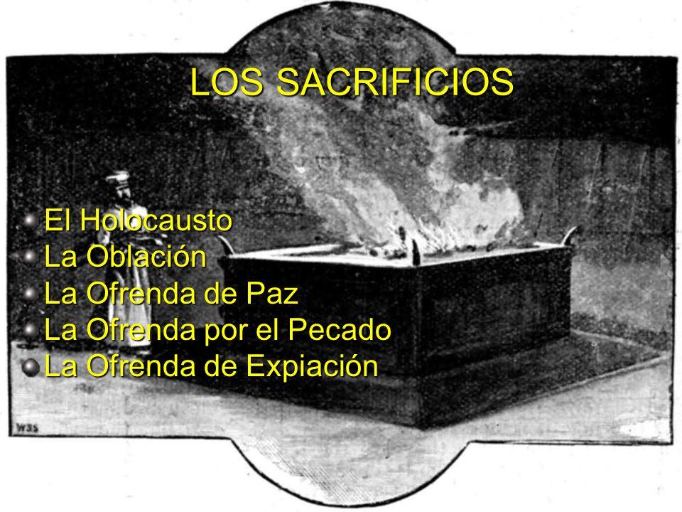Ministerios EN PROFUNDIDAD 2008 EL HOLOCAUSTO Significa ofrenda quemada Requiere animal macho Es una de las 3 ofrendas de olor grato.